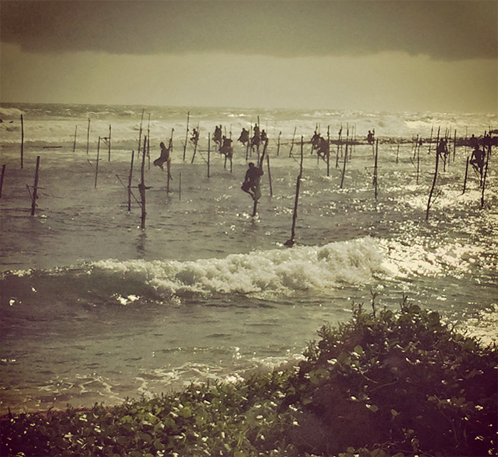 Stilt fishermen in Weligama, fishing